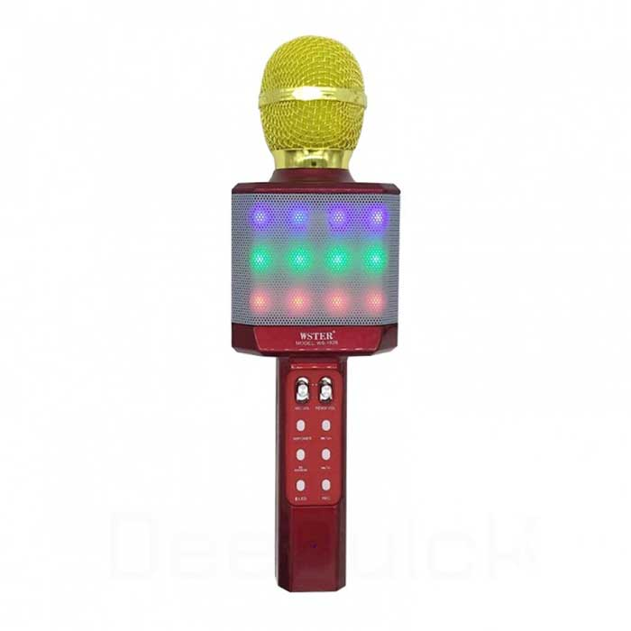 Magic Karaoke WS-1828